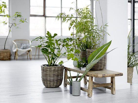 Style Notes - I mobili da giardino devono restare in giardino? GIAMMAI ...