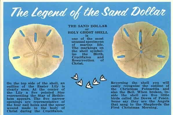 image regarding The Legend of the Sand Dollar Printable referred to as 100+ Jesus Money Printable yasminroohi
