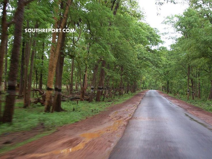 800px-A_Road_near_lambasinghi