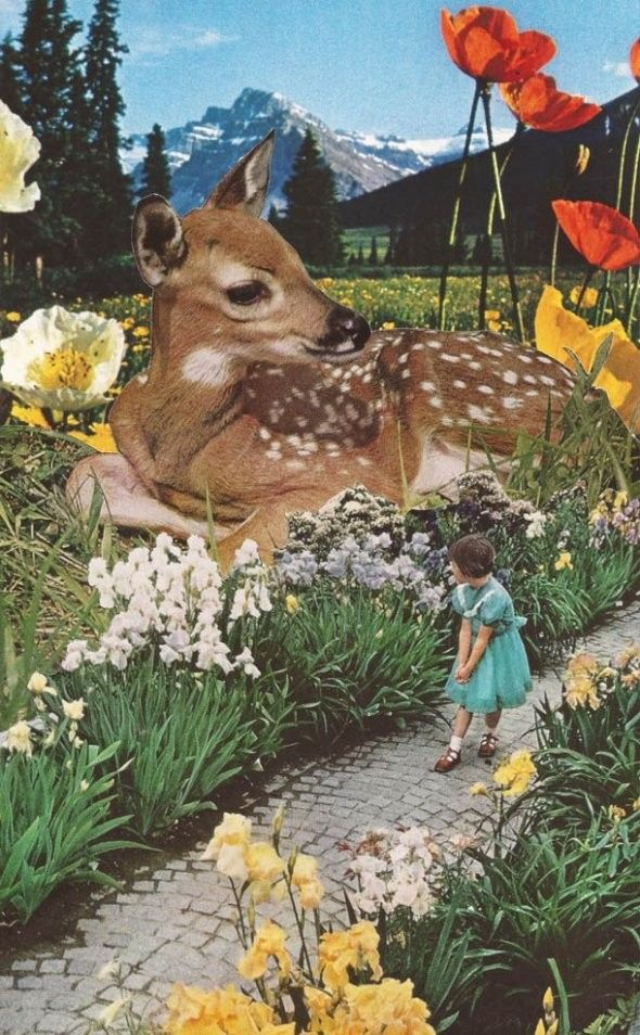 """""""Mapping"""" is a collection of retro surreal collages made from old photos and postcards by American artist Sarah Eisenlohr."""