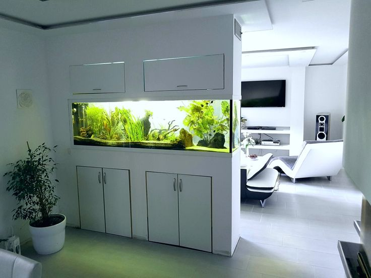 die besten 25 aquarium raumteiler ideen auf pinterest aquarium linearer kamin und kamin m ntel. Black Bedroom Furniture Sets. Home Design Ideas