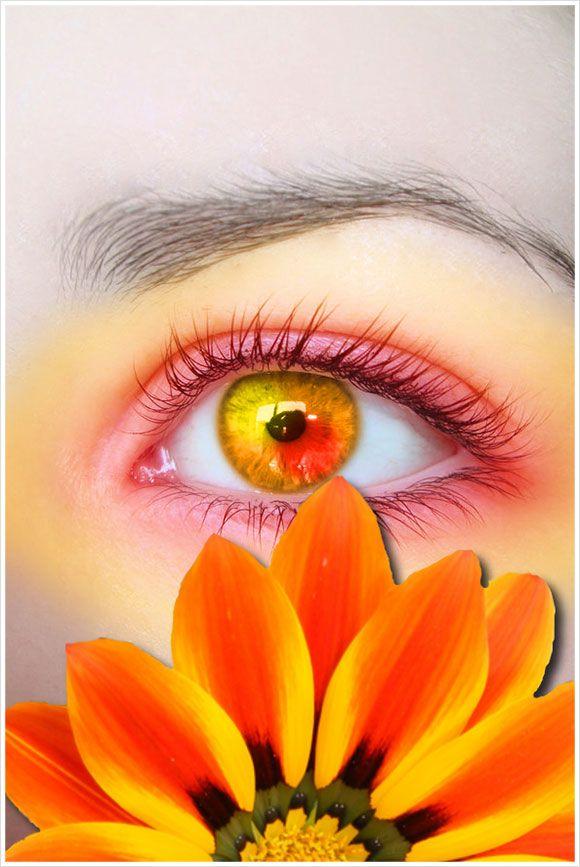 Orange eye with orange makeup and orange flower = very pretty