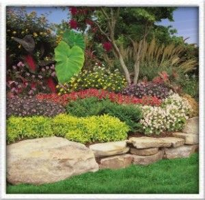 boulder with flat rock for retaining wallgarden walluse the oklahoma or - Rock Wall Garden Designs