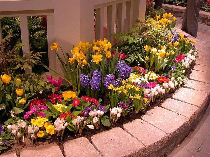 На огороде мы свято соблюдаем севооборот. А вот в цветнике про него забываем. Между тем в почве может накапливаться инфекция, которая погубит прекрасные растения. Так, например, астры и душистый горо…