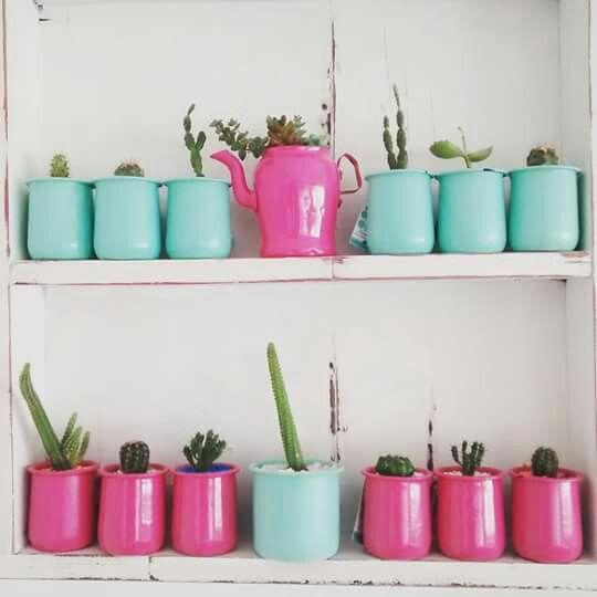 Cactus románticos de yordaki matecitos con alma