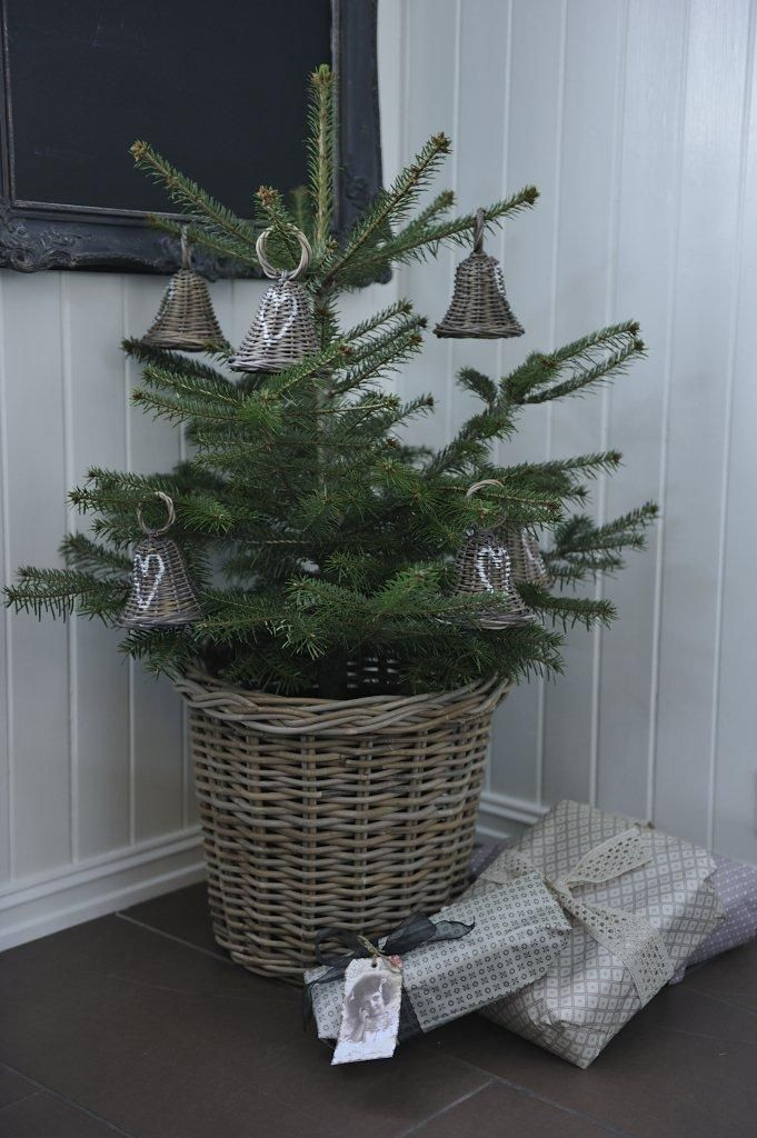Potted Porch Christmas Trees