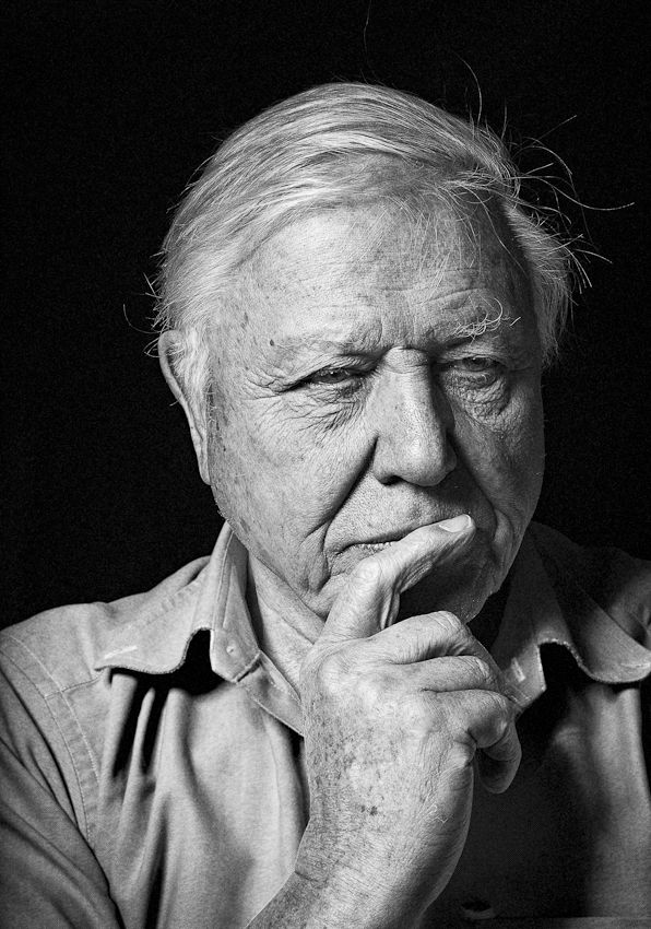 David Attenborough - he's not fashion but he's inspiring.