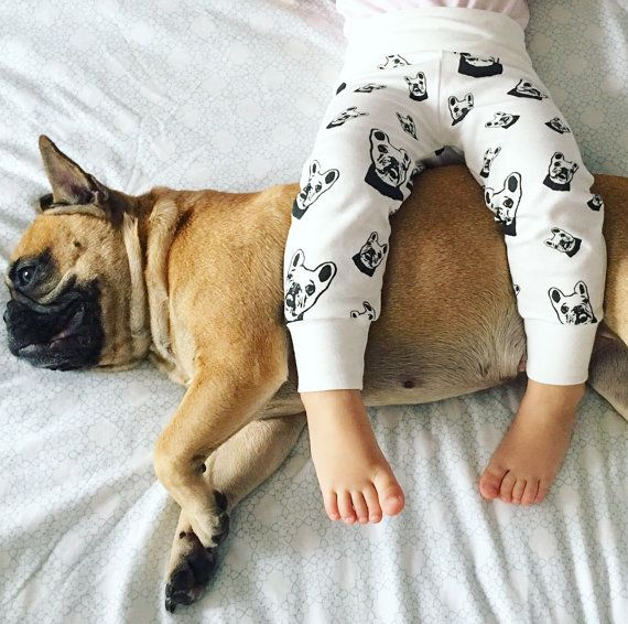 French Bulldog Organic Cotton Baby Leggings Organic Newborn /  These Organic Cotton baby leggings feature unique French Bulldog print so your baby wears new leggings with the image of their favorite dog.   LISTING INCLUDES:  - Organic Cotton baby leggings with French Bulldog print.