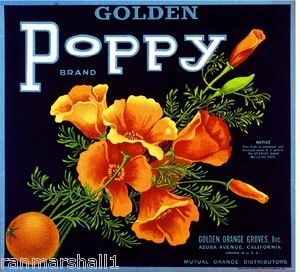 Artwork Azusa Golden Poppy Flowers Orange Crate Label Art Print