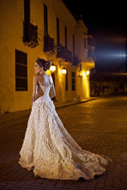 Natalia Araújo Diazgranados Wore This Silvia Tcheri Gown For Her Wedding In Cartagena Colombia