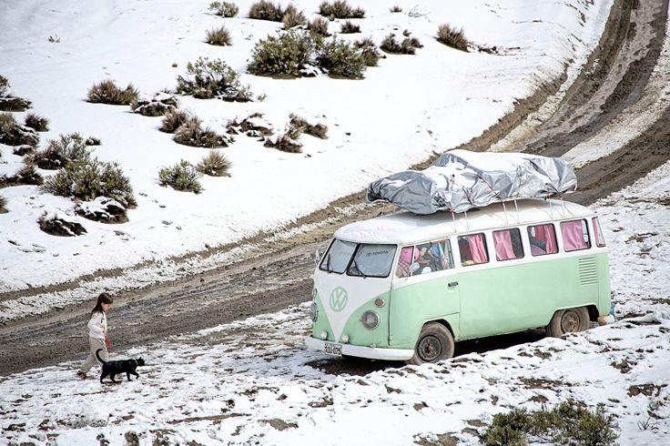 Lollipop, caught by snow in Peru. # volkswagencombi #combilife #combi #cat #blackcat #travelingwithkids #iamfamily #worldschooling #hackinglife #roadschooling #travelingkids #travelingfamily