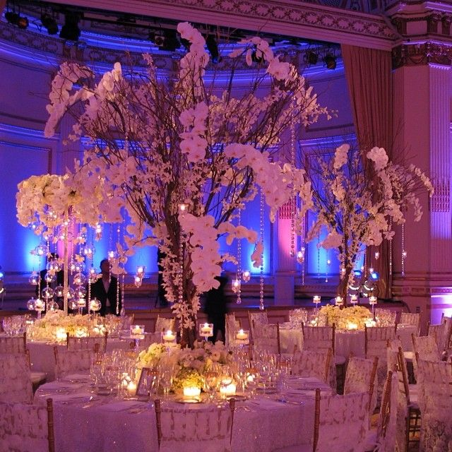 100 best orchid inspiration images on pinterest weddings decor winter wedding decor dresses and junglespirit Images