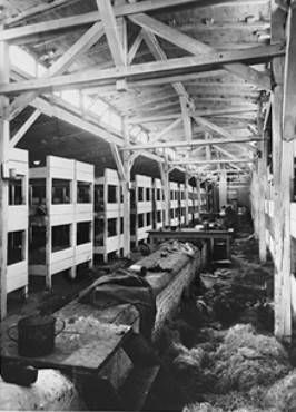 Picture of the interior of barracks in Auschwitz.