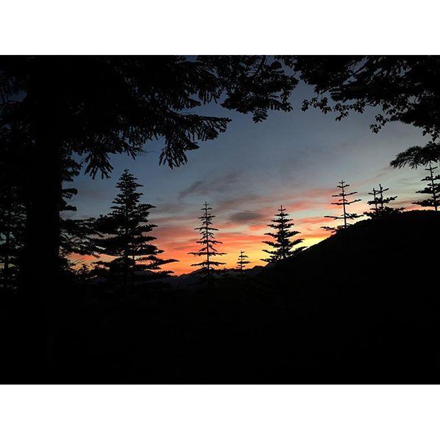 【icapop555】さんのInstagramをピンしています。 《⍋⍋⍋ 山のぼり ⍋⍋⍋ * テン場を誰よりも早く出発し 塩見岳へと一人真っ暗な森へ入る。 日の出迄の1時間半は暗闇の中、 ヘッデンの照らす狭い明かりを頼りに歩く ひとたび恐怖心が顔を出せば進 むことも戻るこさも出来なくなりそ... ニューアイテムのベルの音色がなんとも心強い。 あ、めちゃビビリです。 そんなこんなの精神状態で、待ってましたの日の出様👏 * *  朝がきた!やった!やった!キレイ!! 何度言ったかわからないくらい言った。 * そして号泣。...からの号泣。 いろいろと込み上がるね空見てると。 * * #涙の出る景色 * *  #朝焼け#日の出#涙そうそう#南アルプス#登山#山登り #ソロハイカー#テント泊#山#森#ナイトハイク#暗闇 #恐怖#塩見岳#メロメロ#山が好き#tbt#instagood #icu_japan#ig_japan#igersjp#scenery#landscape #nature#naturelovers#instagood#mountains…