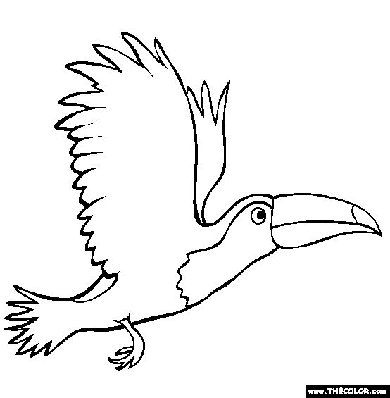 Flying Toucan Coloring Page | Free Flying Toucan Online Coloring