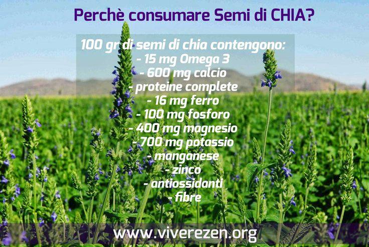 qualche buon motivo per consumare Semi di Chia! vieni a scoprirlo su www.viverezen.org