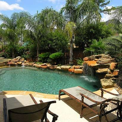 a couple queen palms by the pool may just do the trick---  wish I could have them by my pool!