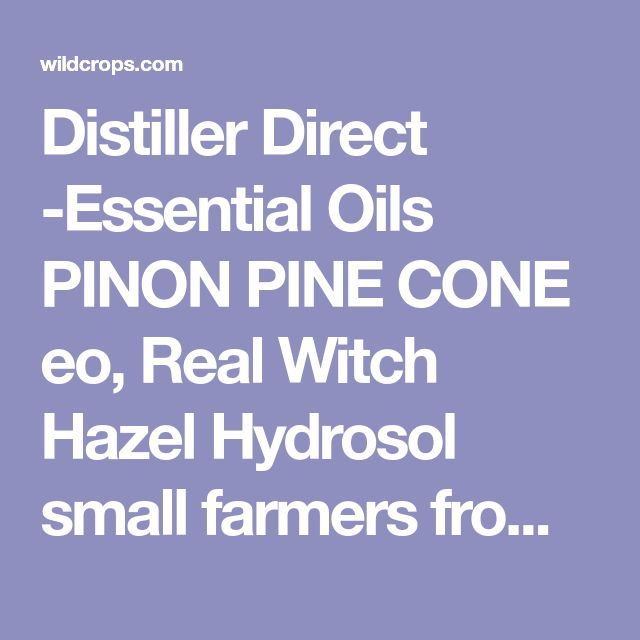 Distiller Direct -Essential Oils PINON PINE CONE eo, Real Witch Hazel Hydrosol small farmers from wild crops.Organic hydrosols Complete rescource for wild harvested products.