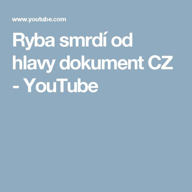 Ryba smrdí od hlavy dokument CZ - YouTube