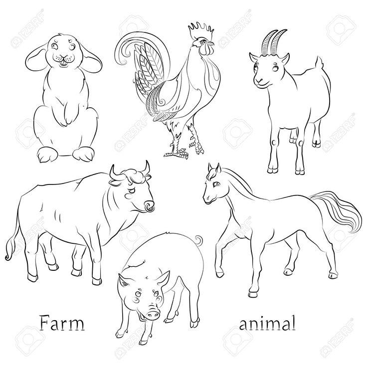 черно-белое изображение быка, петуха, козы, свиньи, лошади и кролика - подходит для окраски ребенка. Клипарты, векторы, и Набор Иллюстраций Без Оплаты Отчислений. Image 63966893.