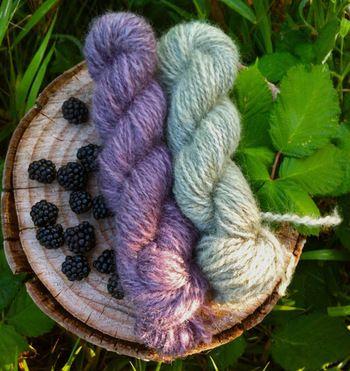草木染め : ブラックベリーは赤紫に。媒染を変えると青みの強いブルーグレーに。