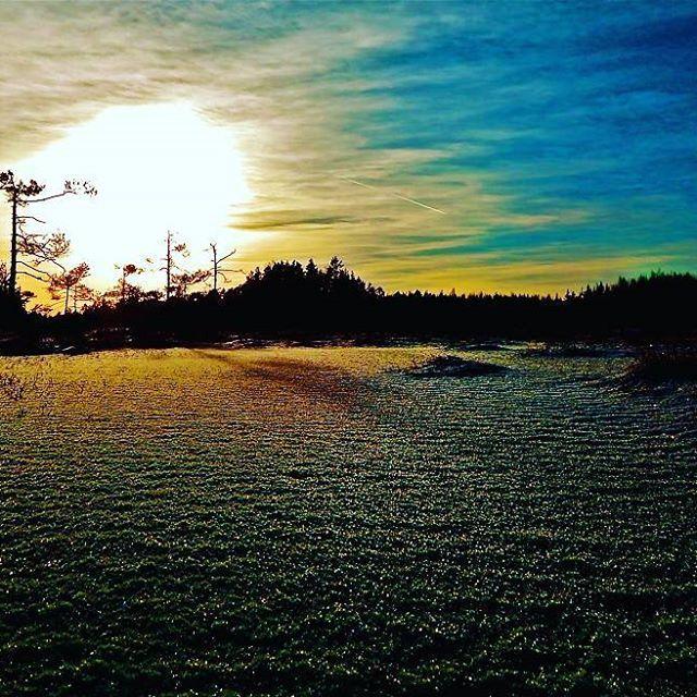 #pyhtää #kansallispuisto #valkmusa #suo #maisema #maisemakuva #luonto  #luontokuvaus  #nikon  #luontoonfi #aurinko #taivas #lumi #suomi100 #swamp #sun #sky #snow #nature #naturelovers #landscapephotography #landscape #clouds