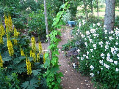 ROSENDAL torp och trädgård