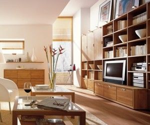 Wooden Finish Wall Unit Combinations From Hülsta | Home Decor News