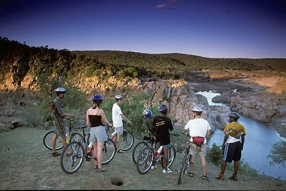 Go on a cycling tour in the Kruger National Park and 7 more activities you can do in South Africa's wildlife parks | Ry fiets tussen die Groot Vyf in die Krugerwildtuin en 7 ander lekker aktiwiteite