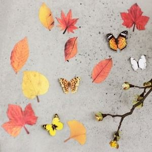 Fall Leaves Wall Deco Set!