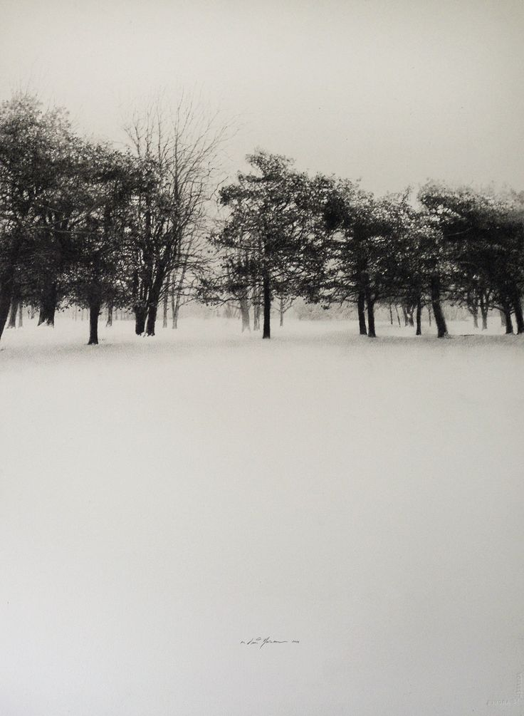 """Winter Lines, Graphite on Arches Watercolor paper, 30"""" x 40"""""""