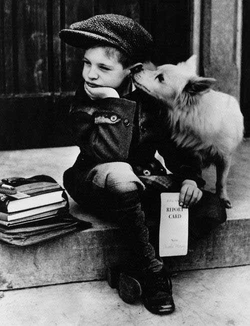 Vintage Pet Pictures zeigen, warum Haustiere der beste Freund jedes Mädchens sind Schöne Hundefotografien!