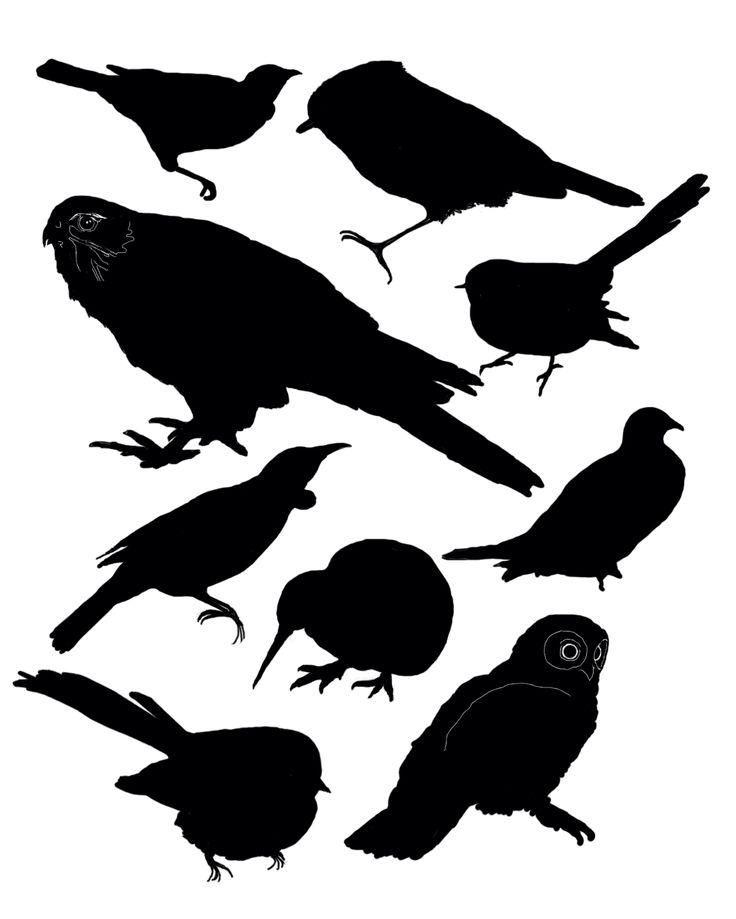 New Zealand bird silhouettes