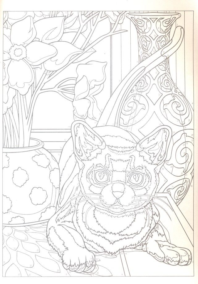 Cats Color By Number Coloring Book Cat Coloring Page Coloring Books Animal Coloring Pages
