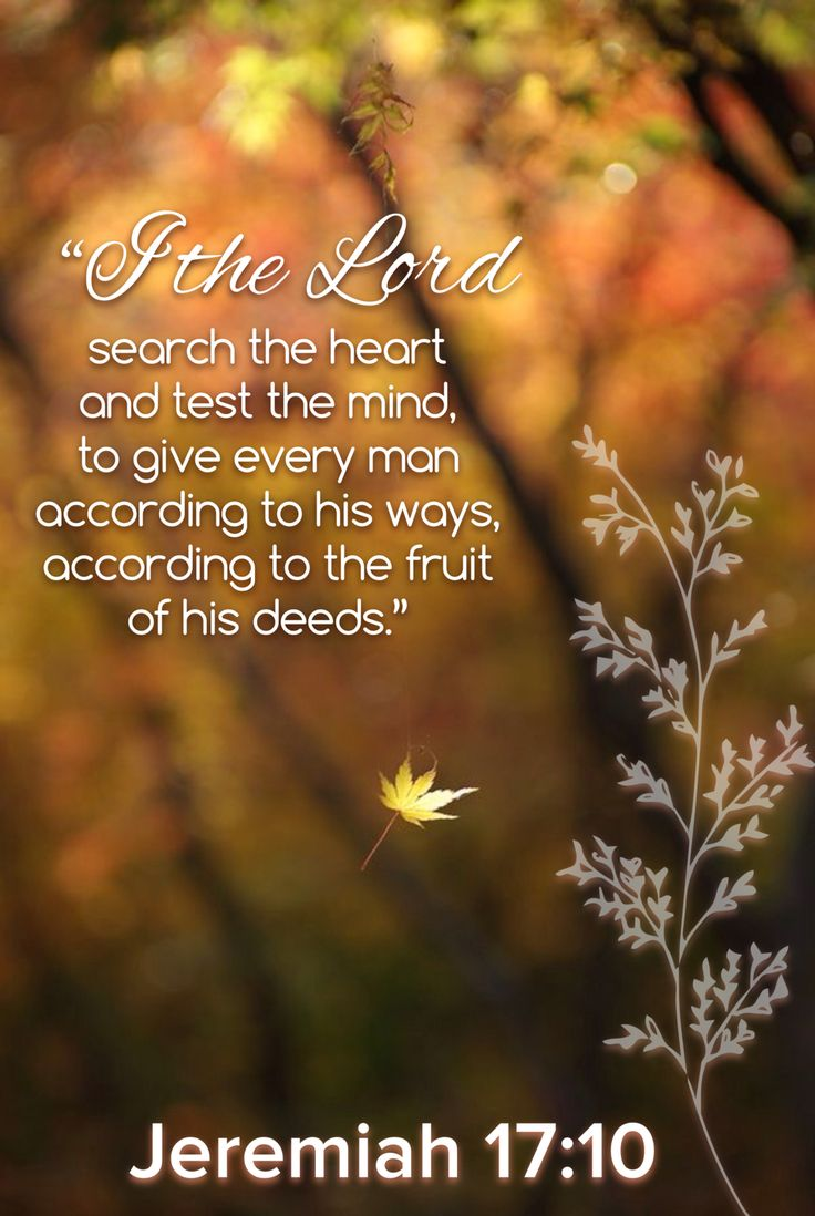 """'Jeremiah 17:7-10 (NKJV) """"Blessed is the man who trusts in the Lord , And whose hope is the Lord . For he shall be like a tree planted by the waters, Which spreads out its roots by the river, And will not fear when heat comes; But its leaf will be green, And will not be anxious in the year of drought, Nor will cease from yielding fruit. """"The heart is deceitful above all things, And desperately wicked; Who can know it? I, the Lord , search the heart, I test the mind, Even to give every man…"""