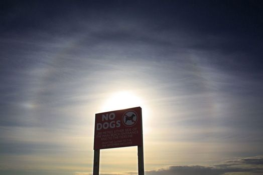 Sun halo photographed by Sarah Gilligan (UK), aged 11. When you can only see arcs of the sun halo either side of the Sun, they're commonly called sun dogs. Sarah used the sign to block the direct sunlight as she took the picture. Appropriately, it says 'No Dogs'. Sarah was Runner up in the 2009 competition.