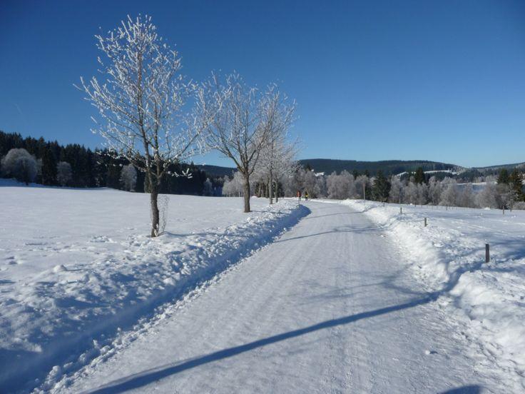 #Winterwanderung durch den #Schwarzwald http://www.auerhahn.net/de/winter