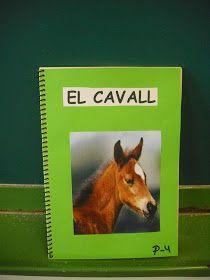 Com són els cavalls? Què mengen? On viuen?    Aquestes preguntes van sorgir a la classe de P4 , que havien triat treballar els cavalls a...
