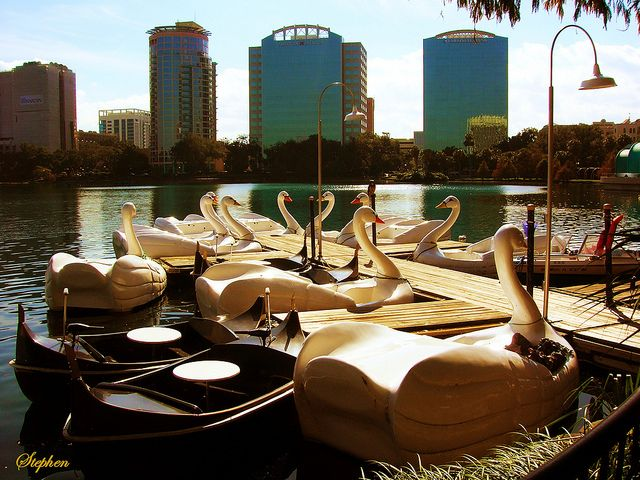 A ride on a paddle boat is a great way to explore Lake Eola. Lake Eola Park has swan-shaped paddle boats available for rent for $15.00 per half hour.