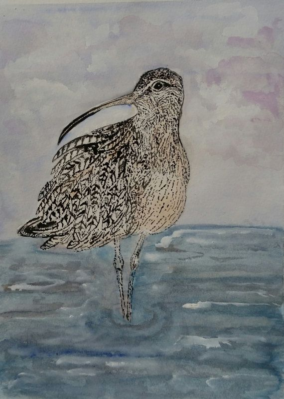 Hey, I found this really awesome Etsy listing at https://www.etsy.com/listing/499158940/curlew-bird