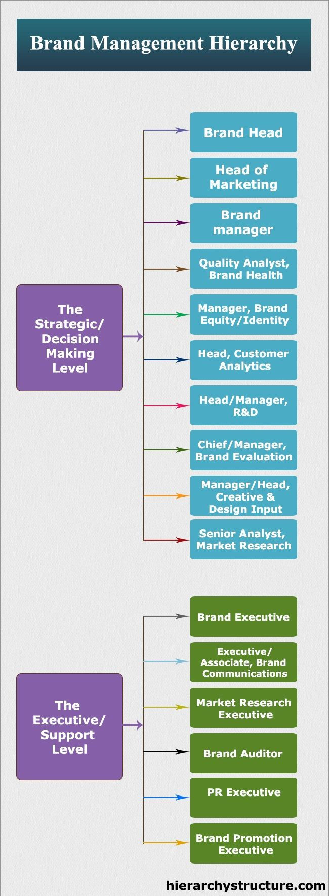 Brand Management Hierarchy - Via W Hail