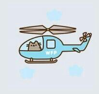pusheen in her helicopter(: Why do I have to be allergic to cats I love them so much!!