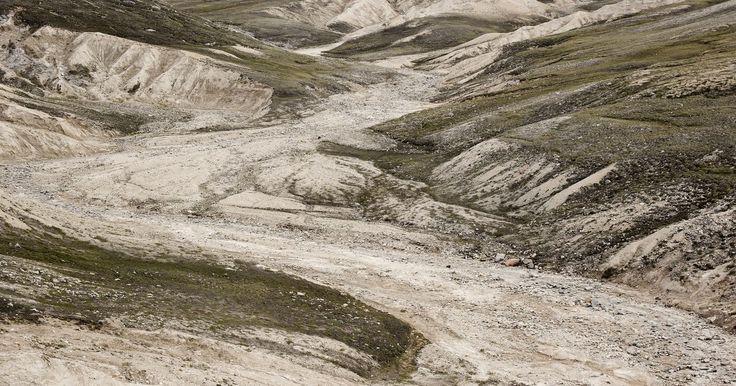 Cuáles son las características ambientales de la tundra. Una tundra es el más frío de todos los hábitats geográficos grandes, también conocidos como biomas. Hay dos tipos de tundra, alpina y ártica. La tundra alpina se encuentra por encima de la línea de árboles en las altas montañas de todo el mundo. La tundra ártica se encuentra en el hemisferio norte y se extiende desde el polo norte hacia el sur, ...