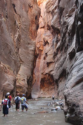 25 Best Ideas About The Narrows Zion On Pinterest The Narrows Zion Utah And Zion Narrows Hike
