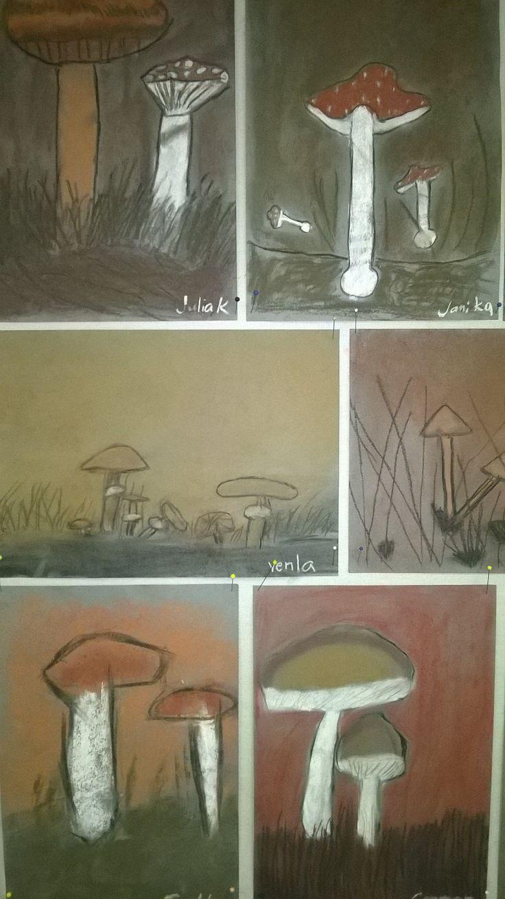 Ruskohiilillä, taululiidulla ja tavallisella piirustushiilellä tehdyt sienityöt. Paperina harmaa A4.Tarkastelimme ensin sienikuvia ja sitten etsimme kirjasta sieniä, joita työhön haluttiin tehdä. Malli sienestä sai olla koko ajan vieressä. Sormilla ja paperilla pehmennettiin liidun jälkeä, jotta saatiin aikaan utuinen tunnelma.3x45 min
