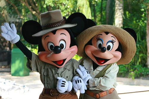 : Walt Disney, Mickey Mouse, Happy Couple, Animal Kingdom, Disney World, Adult Costumes, Minnie Mouse, Mickey Costumes