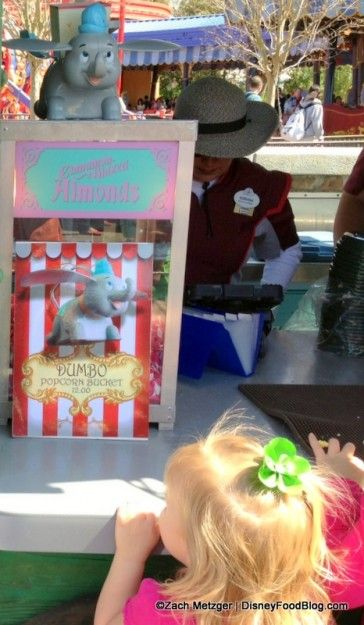 Admiring the new Dumbo Popcorn Container