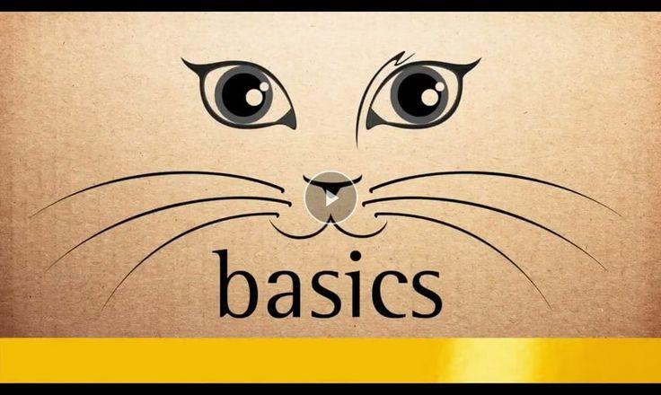 happyCat* 100% sicheres Katzenhalsband zum selber Basteln - HD >> basics