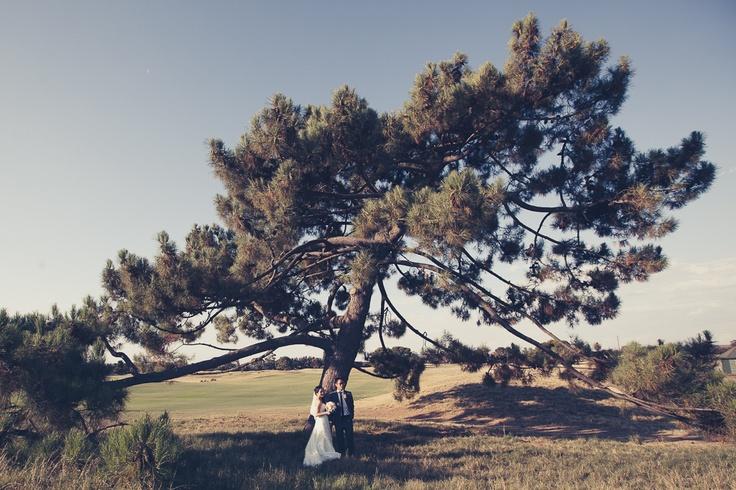 #Wedding #Photo #Art #Bride #Groom #Love #special #kiss #tree #beauty