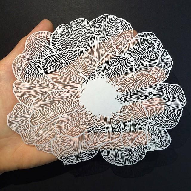 Best Cut Paper Artist Maude White Images On Pinterest Paper - Intricate hand cut paper art maude white